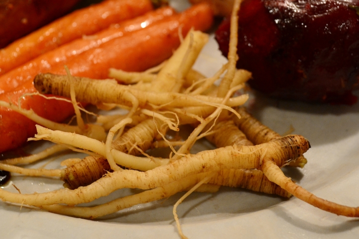 Genetically it's believed that Wild Carrot is the direct progenitor to our modern Carrot.