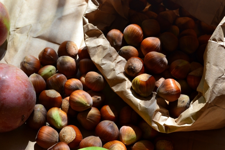 Delicious filberts from last years harvest. Filberts are a great source of healthy fats (oleic acid), protein, carbohydrates, vitamin E, minerals, dietary fiber, (beta-sitosterol), and antioxidants.
